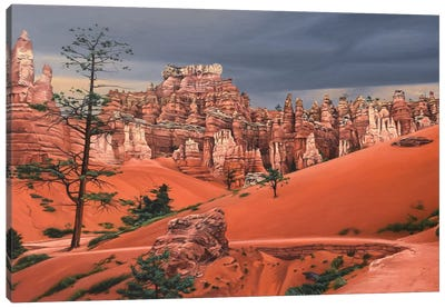 Storm In Bryce Canyon Canvas Art Print