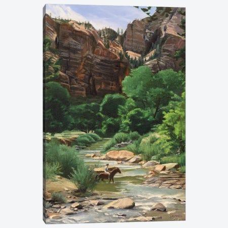 Virgin River – Zion Canvas Print #SVD91} by Nick Savides Canvas Print