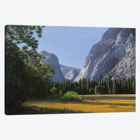 Yosemite Valley Canvas Print #SVD95} by Nick Savides Canvas Wall Art