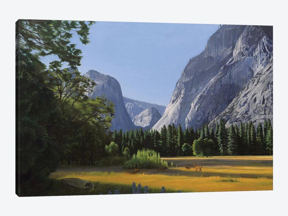 Yosemite Valley by Nick Savides 1-piece Canvas Art Print