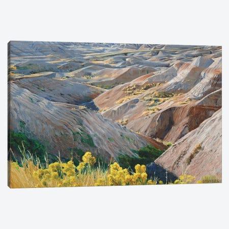 Badlands At Sunset Canvas Print #SVD9} by Nick Savides Canvas Wall Art