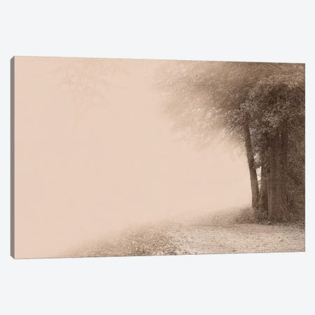 Gate To Infinity Canvas Print #SVI3} by Igor Svibilsky Canvas Print