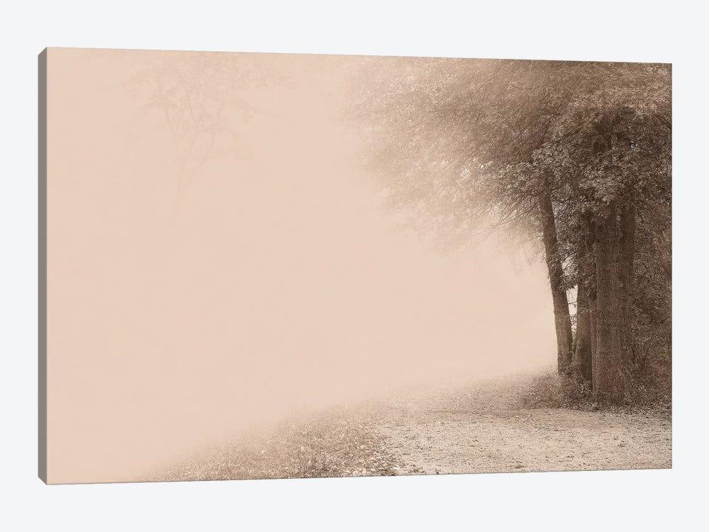 Gate To Infinity by Igor Svibilsky 1-piece Canvas Art