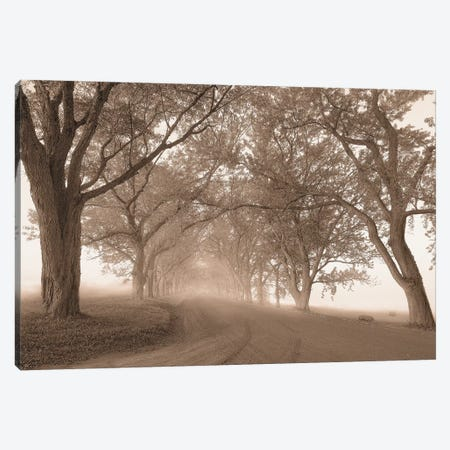 Guardians Of The Road Canvas Print #SVI4} by Igor Svibilsky Canvas Art
