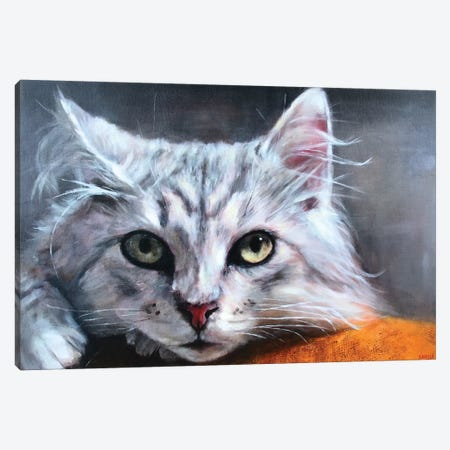 Tonka Canvas Print #SVL22} by Christine Savella Canvas Wall Art