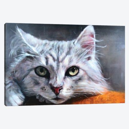 Tonka Canvas Print #SVL22} by Christine Savella Canvas Wall Art