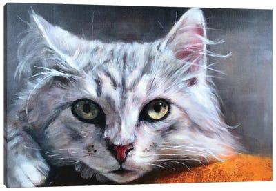 Tonka Canvas Art Print