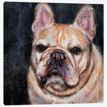 Frank The Frenchie Canvas Print #SVL4} by Christine Savella Canvas Print