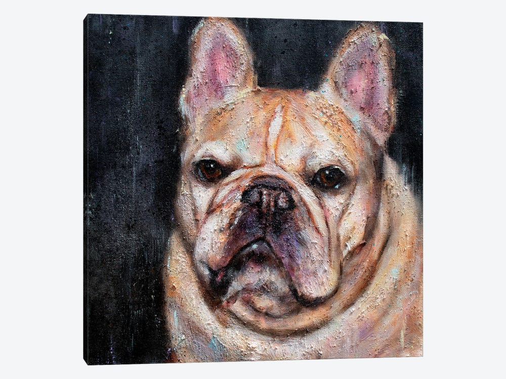 Frank The Frenchie by Christine Savella 1-piece Canvas Artwork