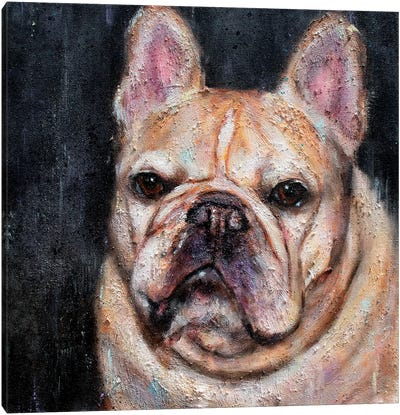 Frank The Frenchie Canvas Art Print