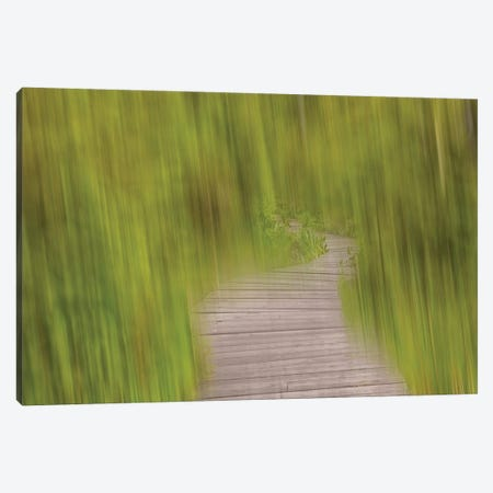 Blurred Path Canvas Print #SVN12} by Savanah Plank Canvas Art Print