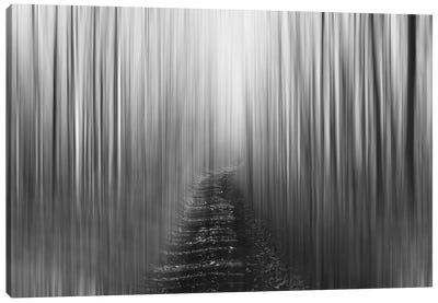 Blurred Trail, Black & White Canvas Art Print