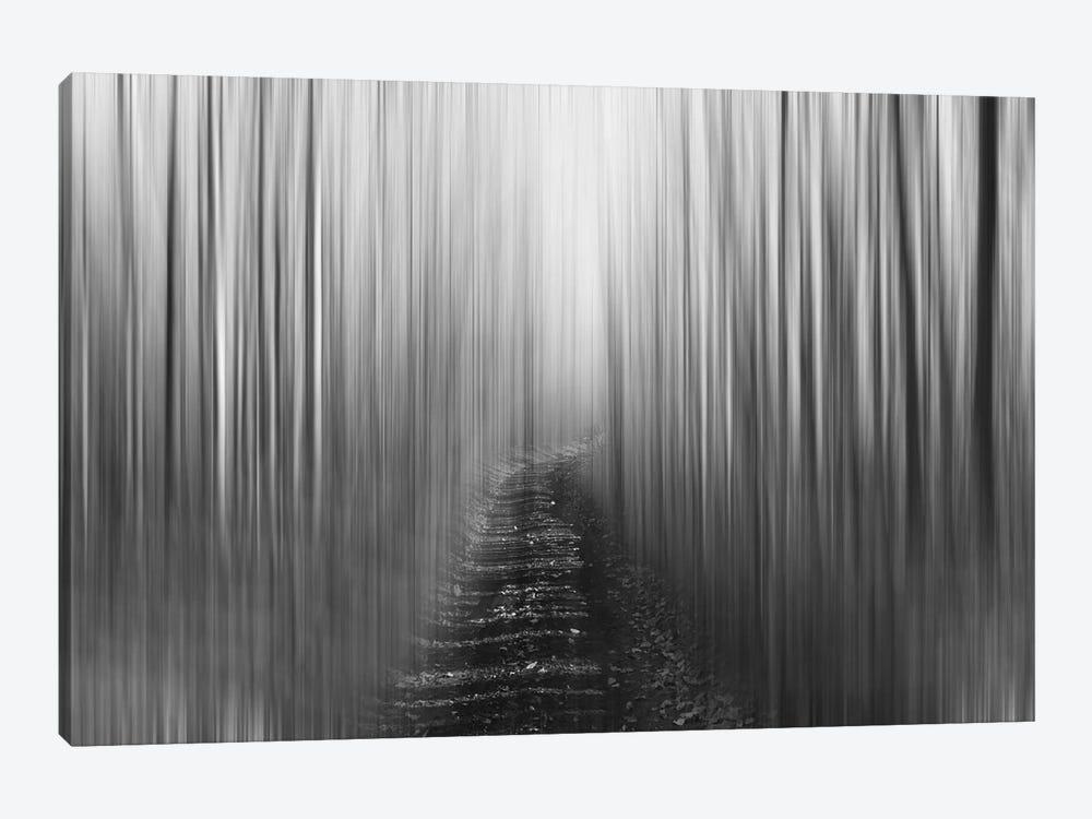Blurred Trail, Black & White by Savanah Plank 1-piece Canvas Artwork
