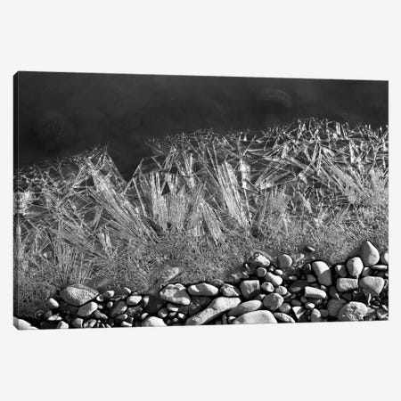Frozen River's Edge Canvas Print #SVN27} by Savanah Plank Canvas Print