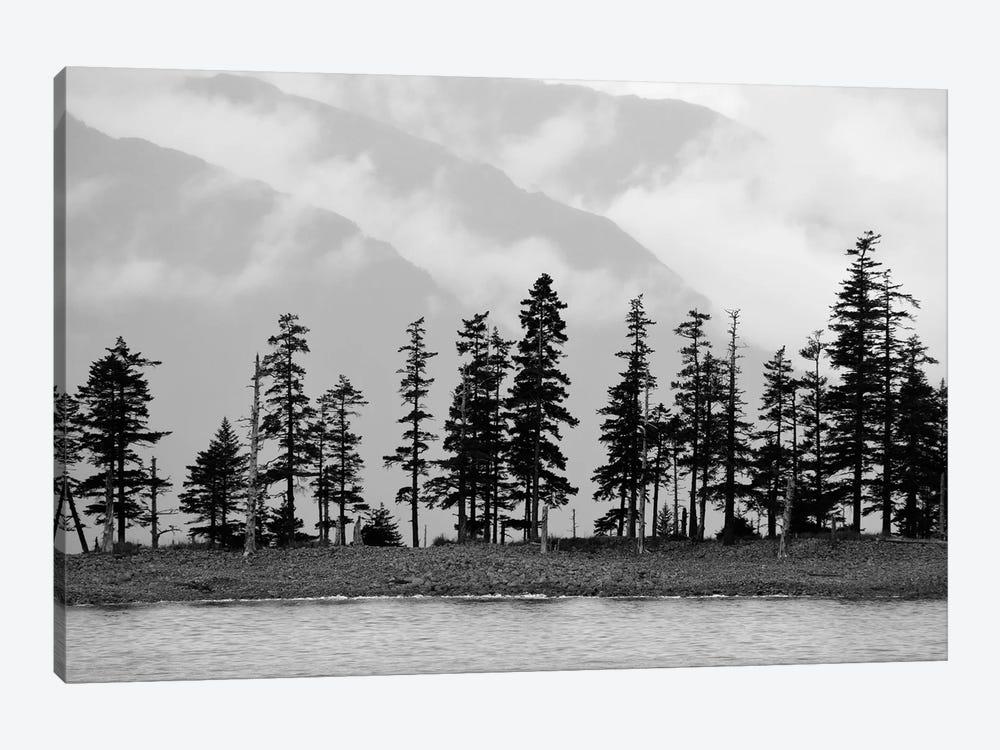 Pines On Beachfront by Savanah Plank 1-piece Canvas Art Print
