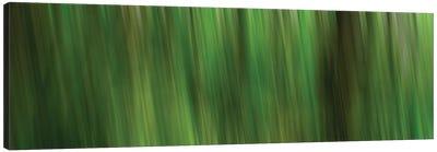 Tree Motion Canvas Art Print