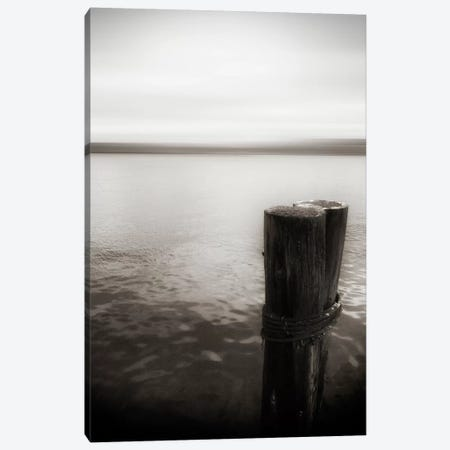 View From Pier, Alki Beach, Seattle, Washington II Canvas Print #SVN57} by Savanah Plank Canvas Artwork
