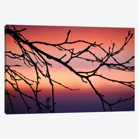 Abstract Sunset III Canvas Print #SVN5} by Savanah Plank Canvas Art Print