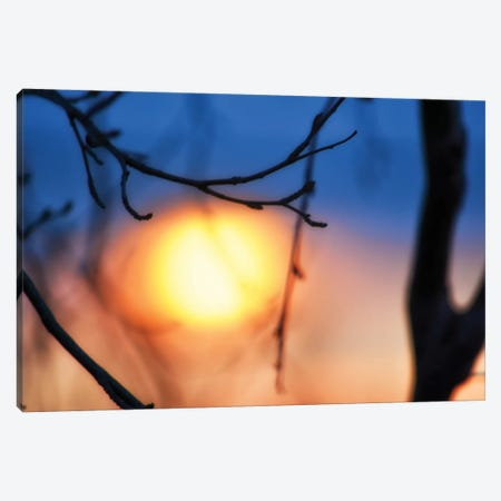 Abstract Sunset Canvas Print #SVN64} by Savanah Plank Art Print
