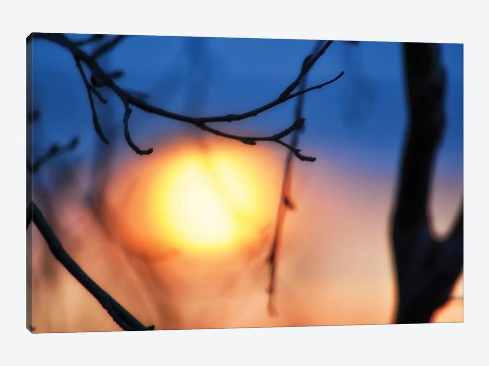 Abstract Sunset by Savanah Plank 1-piece Canvas Art Print
