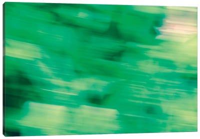 Flora Motion Canvas Art Print