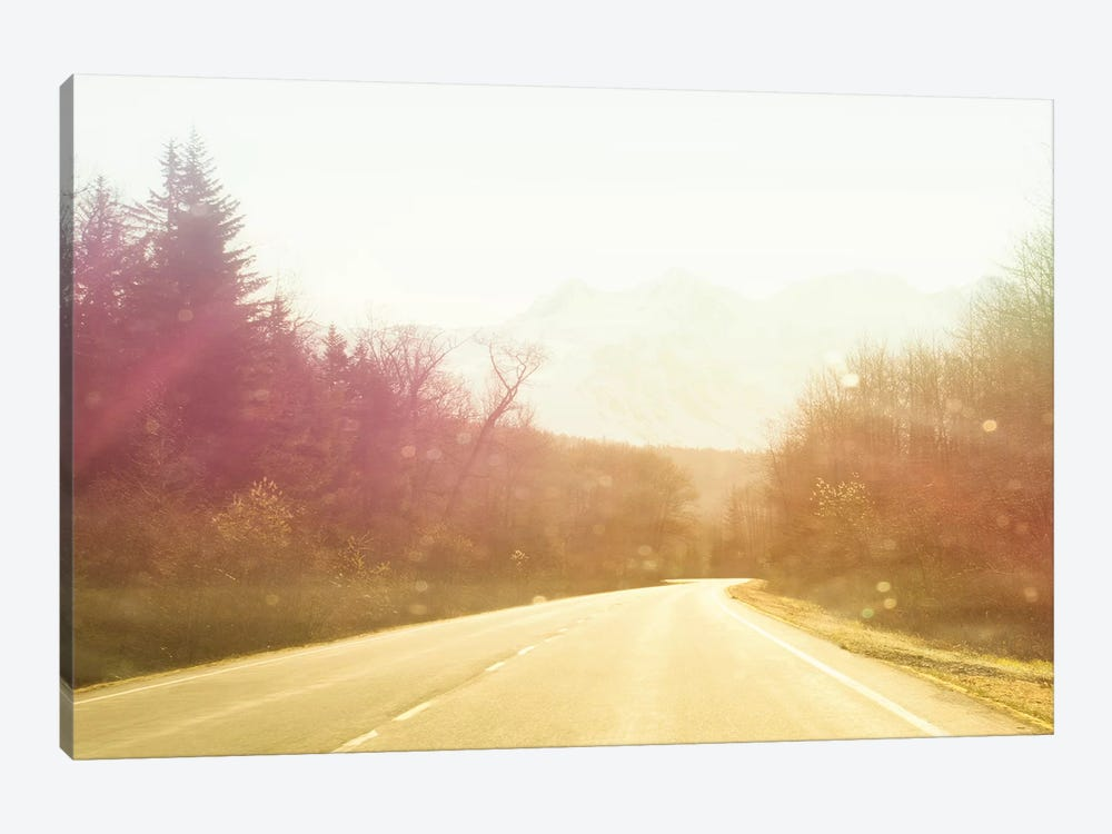Alaska Road Trip by Savanah Plank 1-piece Art Print