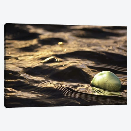 Vintage Glass Float I Canvas Print #SVN81} by Savanah Plank Canvas Wall Art