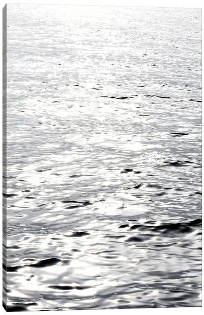 Ocean Reflection Canvas Art Print