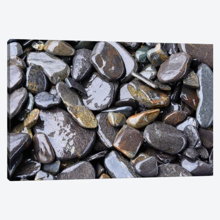 Beach Rocks Detail Canvas Print #SVN8} by Savanah Plank Canvas Wall Art