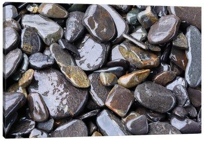 Beach Rocks Detail Canvas Art Print