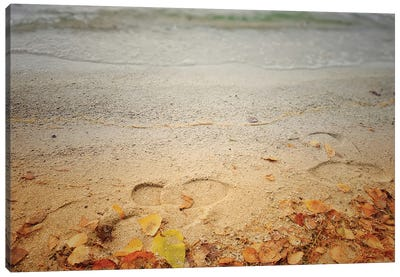 Footprints In The Sand Canvas Art Print