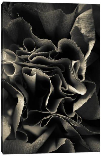 Paper Rose Canvas Art Print
