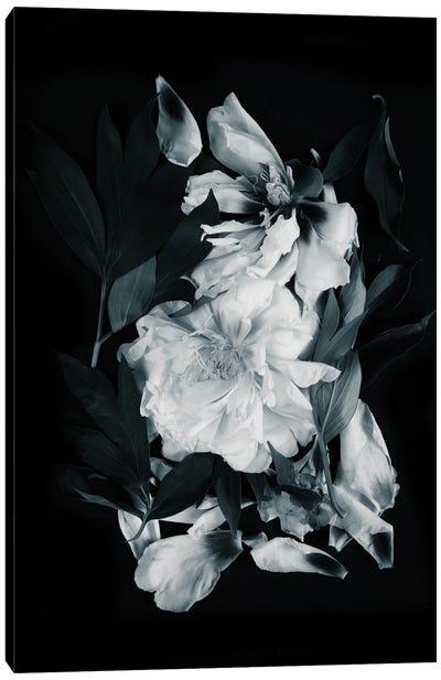 Peonies Bouquet I Canvas Art Print