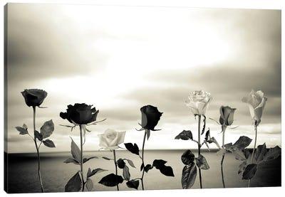 Roses And Sea II Canvas Art Print
