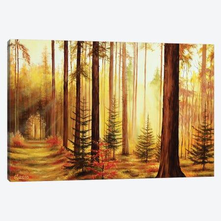 Lights And Shadows Canvas Print #SVS18} by Svetoslav Stoyanov Canvas Artwork