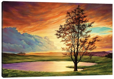 Piece Of Heaven Canvas Art Print