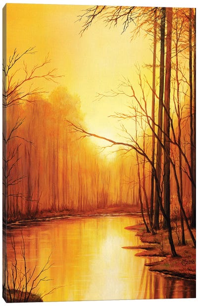 The End Of Autumn Canvas Art Print