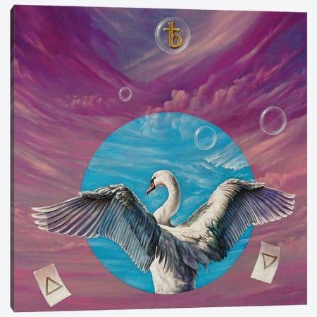 The Swan Canvas Print #SVS54} by Svetoslav Stoyanov Canvas Print