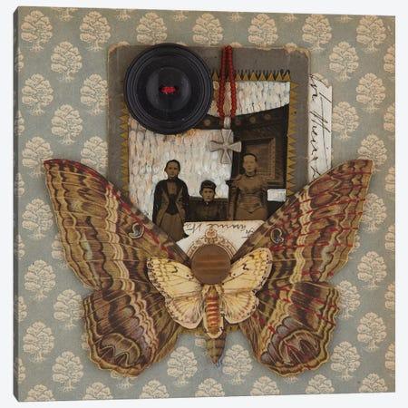 Little Man Canvas Print #SVY5} by Susan Savory Canvas Print