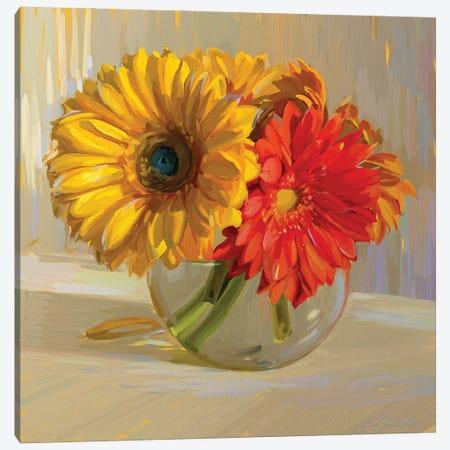 Sunny Gerbera Daisies Canvas Print #SVZ16} by Svetlana Zyuzina Canvas Art
