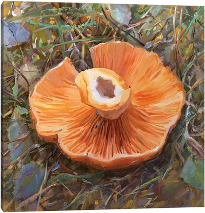 Mushrooms Season Canvas Art Print
