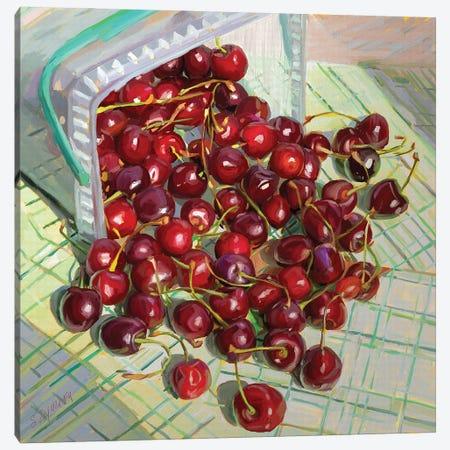 Freshly Picked  Up Cherries Canvas Print #SVZ31} by Svetlana Zyuzina Canvas Print