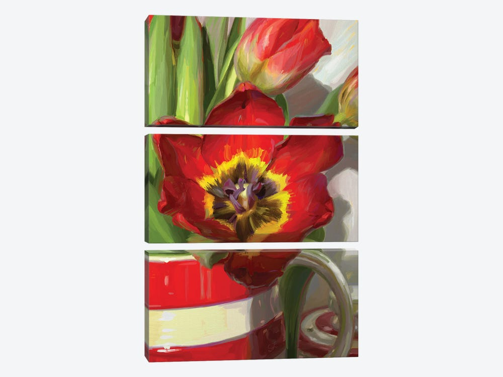 Red Tulip From Amsterdam by Svetlana Zyuzina 3-piece Canvas Art