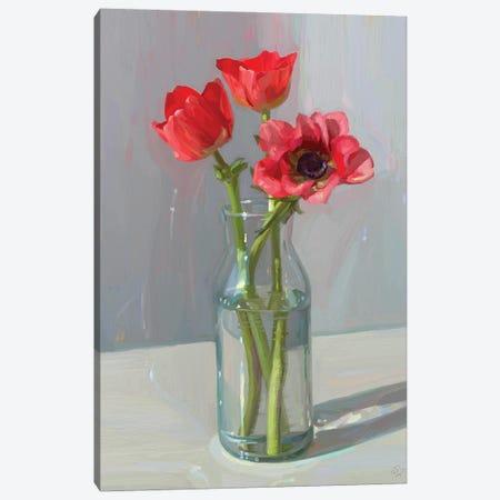 Charming Anemone Flowers Canvas Print #SVZ52} by Svetlana Zyuzina Art Print