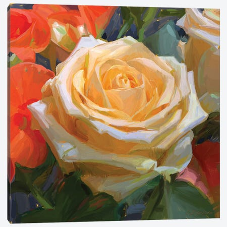 Rose Canvas Print #SVZ5} by Svetlana Zyuzina Canvas Art