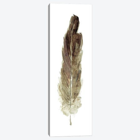 Soft Feather I Canvas Print #SWA108} by Sally Swatland Canvas Wall Art