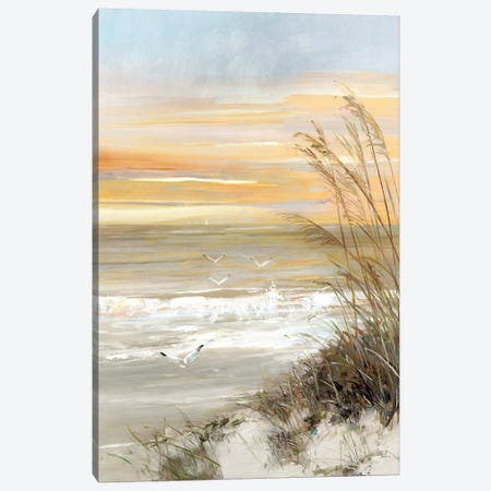 Summer Solstice Canvas Print #SWA115} by Sally Swatland Canvas Wall Art