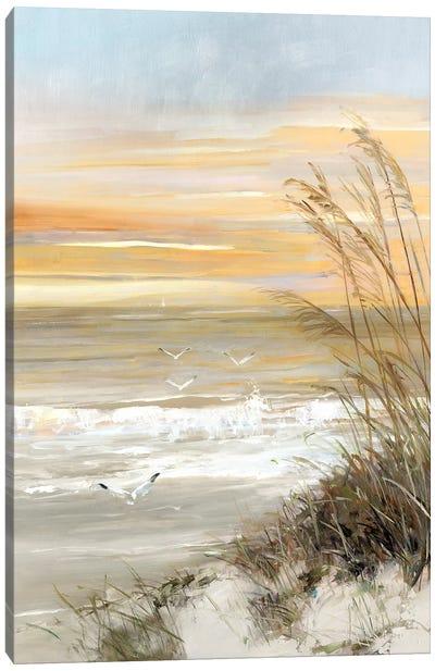 Summer Solstice Canvas Art Print