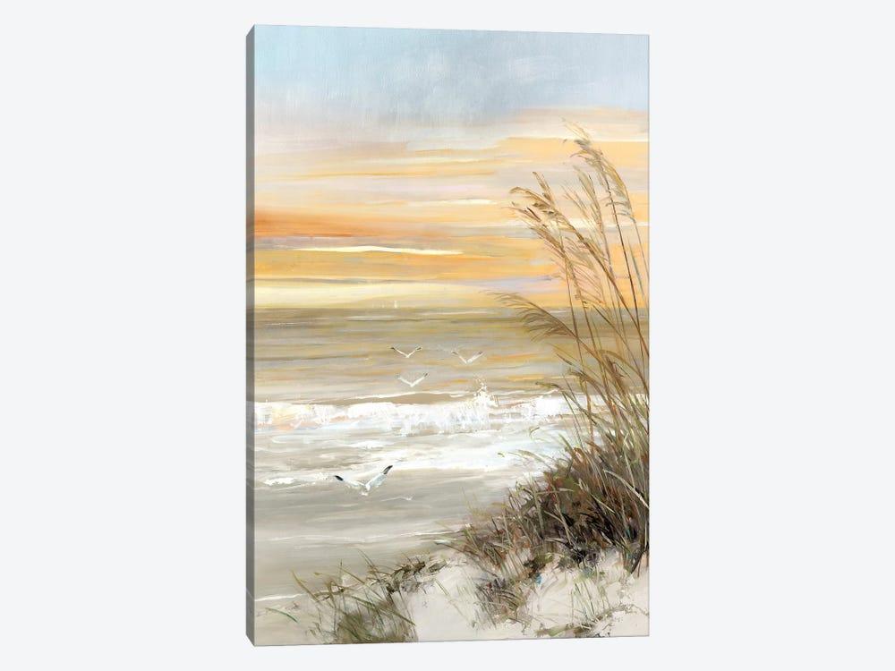 Summer Solstice by Sally Swatland 1-piece Canvas Art