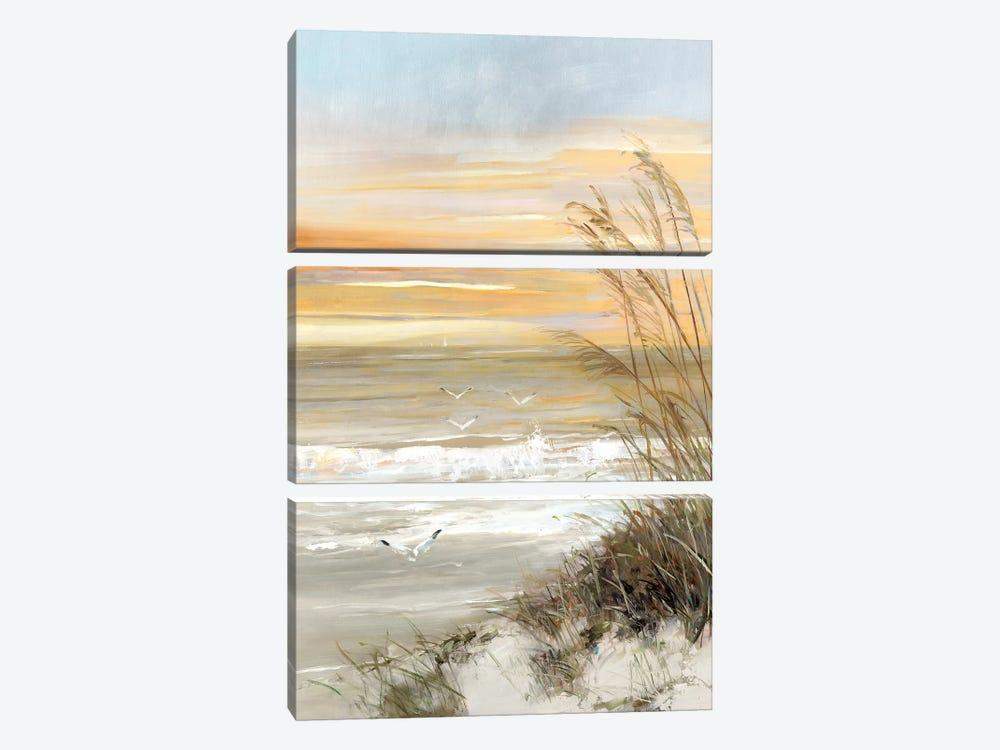 Summer Solstice by Sally Swatland 3-piece Canvas Art